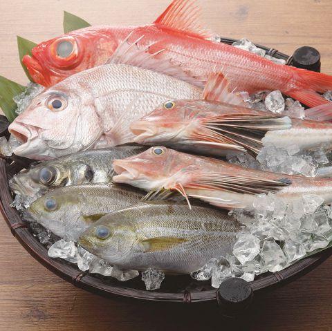 新鮮な、そして安心・安全な魚介をお客様に楽しんでいただきたい!その想いは、全国津々浦々の提携漁港で水揚げされた魚介を全国の店舗へ直送するという形で実を結びました。※休漁期や時化など、天候・季節により水揚げがない場合があります。