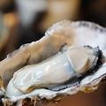 料理メニュー写真絶品!!プリプリ蒸し牡蠣