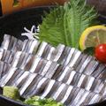 料理メニュー写真キビナゴ刺身