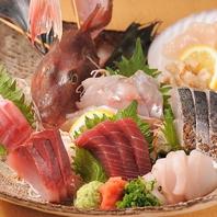 大容量!満足の新鮮鮮魚★