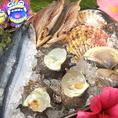 海鮮!魚介!季節ごとに旬な魚を仕入れてます。炭火焼にてご堪能あれ♪