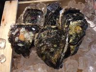 金山/居酒屋◆南伊勢町直送、岩牡蠣入荷しました!