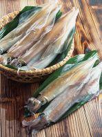 玄海や天草の天然旬魚