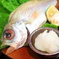料理メニュー写真島根県濱田町 ノドグロ(半身)