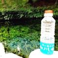 拘りのドリンクには拘りの水を。 [日本名水百選]に選ばれる 阿蘇 白川水源の水を輸送して使用しております。 やわらかく透き通った水だからこそ雑味を加えることなくドリンクを引き立てるのです。