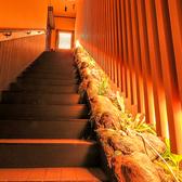 【1階】から【2階】にあがる階段…。小さなお庭をお楽しみ下さい。