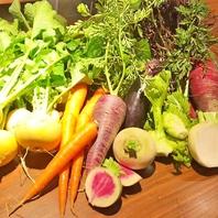 【安心・安全・美容◎】契約農家直送の新鮮野菜を使用♪
