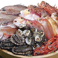 魚侍 はなれの特集写真