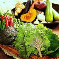 野菜ソムリエが選んだ新鮮野菜!!身体の中から健康に♪