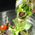 料理メニュー写真季節野菜のブルックリン・メイソンジャー・サラダ
