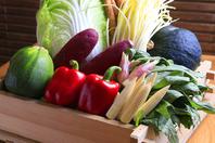 山形産直送の朝摘み野菜