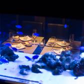 アクアリウム個室が非日常空間を演出
