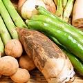 料理メニュー写真本日のおすすめ野菜