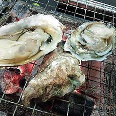 小長井産牡蠣(季限定 11月中旬~3月)