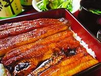 鰻のお料理各種
