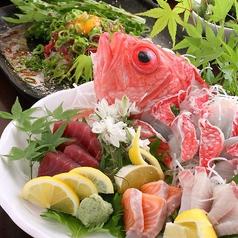 地鶏と鮮魚のお店 あおいやのコース写真