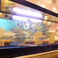 店舗にはピッチピチのお魚がお出迎え♪毎日オープン前に〆る「活〆め鮮魚」がおススメ!