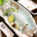 料理メニュー写真名物!!泳ぎイカのお刺身♪丁寧に取り扱われた手釣りもの。そこも、こだわりです。