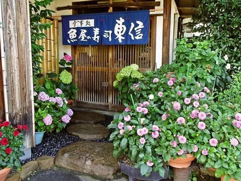 魚屋の寿司東信