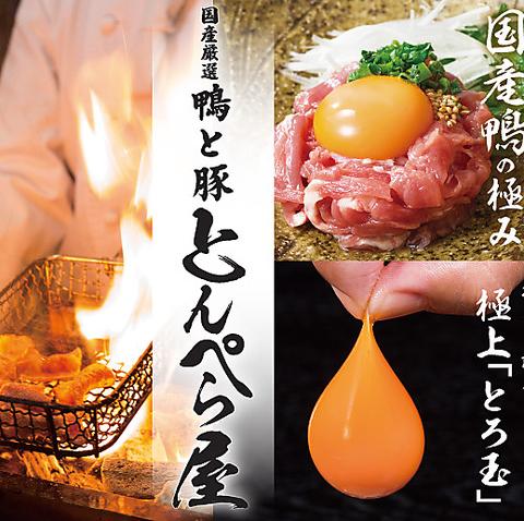 鴨と豚 とんぺら屋 豊田本店