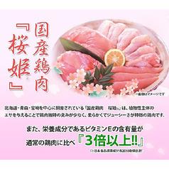 宮崎ぢどり屋 薩摩桜 梅田のおすすめ料理1