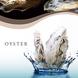 世界初、最浄品質の牡蠣!