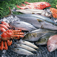 魚好き必見!!鮮度にこだわる厳選魚介をご提供