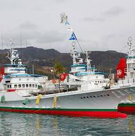 かつお一本釣り漁船【明神丸】で釣り上げた鰹をタタキで