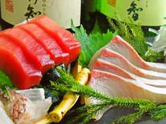 魚のてっぺんの特集写真