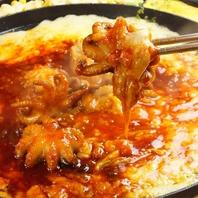 【オススメ♪】韓国の辛い料理の代表の1つ、チュクミ!