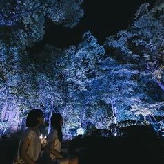 太閤園 大阪城北詰の雰囲気1