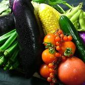 厳選された新鮮野菜を使用しております。