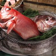その日、港で揚がった魚の一番美味しい食べ方で♪
