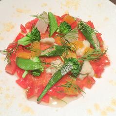 料理メニュー写真紅トロサーモンと旬菜のお刺身仕立て