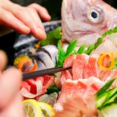 朝どれ鮮魚と和ノ個室 蔵重 くらしげのおすすめ料理2