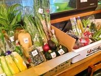 新鮮野菜の数々