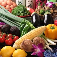 四季折々の野菜を使ったお料理が楽しめます♪