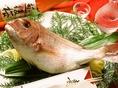 10名様以上のコース予約で祝い鯛をプレゼント!!歓送迎会や還暦などお気軽にお問合せ下さい。