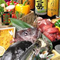 店主が毎日仕入れる市場直送の新鮮鮮魚の数々