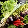 食材は産地から拘った厳選食材を使用!ヘルシーでフレッシュな季節野菜をふんだんに!