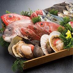 海鮮アトム 武生店のおすすめポイント1