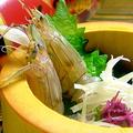 料理メニュー写真[シャコ]酢の物/焼き