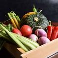 生で食べても美味しい新鮮なお野菜。旬のお野菜で季節感を楽しめるお料理も魅力的です。