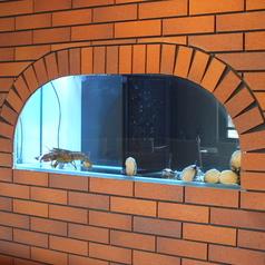 店内特設の水槽には、新鮮な魚介類をご用意しております。