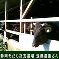 【牛肉の地産地消】牛肉は『静岡そだち』を仕入れています。柔らかく、きめ細やかな肉質と上品な旨みのある和牛肉は、自信を持っておすすめできる美味しさです。