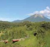 清き水の流れる大自然大山からの贈り物