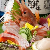 毎日仕入れる新鮮な魚介
