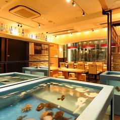 上野イカセンターの特集写真