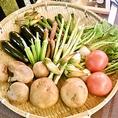 オーナー厳選のとっても新鮮なお野菜を取り揃えております