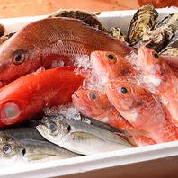 築地直送の鮮魚は、鮮度ケタ違い!!